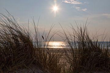 Düne, Strand, Sonne und Meer von Miranda van Hulst