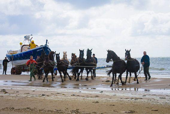 Paardenreddingsboot op Ameland