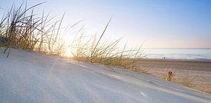 Nederlands strand bij zonsondergang van