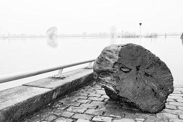 Hoogwater aan de IJssel von Lysanne Artcrafx
