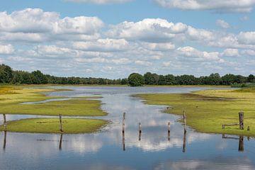 Erfahrung mit Clouds von Elles Rijsdijk