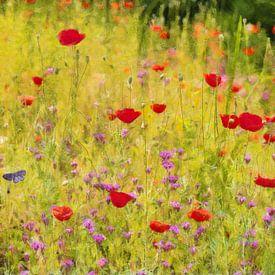 Meadow van Bright Designs