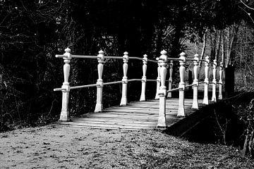 Prachtige brug von Joyce Pals