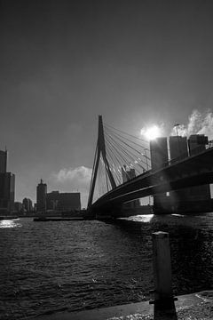 Erasmusbrug met schip van Nathalie van der Klei