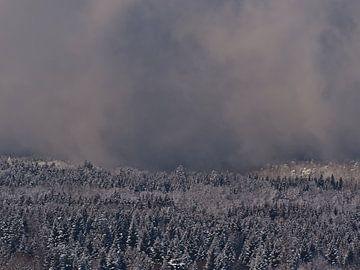 Besneeuwd bos met opkomende donkere wolken op de Schwäbische Alb in de winter van Timon Schneider