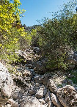 droge rivierbedding met keien en rotsen von Compuinfoto .