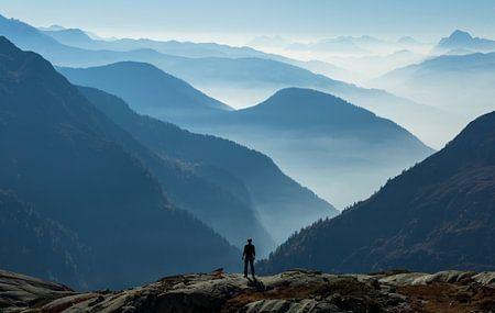 Wanderer above the Sea of Fog van Sander van der Werf