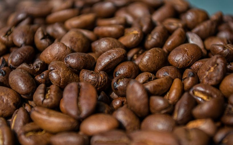 koffiebonen van Onno van Kuik