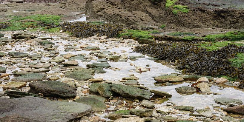 Low tide von Andreas Wemmje