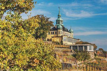 Spitz House Radebeul van Gunter Kirsch