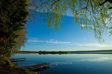 Dämmerung über der ruhigen Wasseroberfläche des Sees. Morgendlicher blauer Himmel, am Ufer grüner Bä von Michael Semenov
