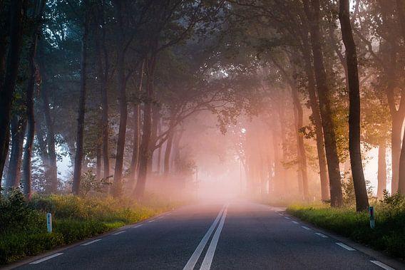 Magische mist