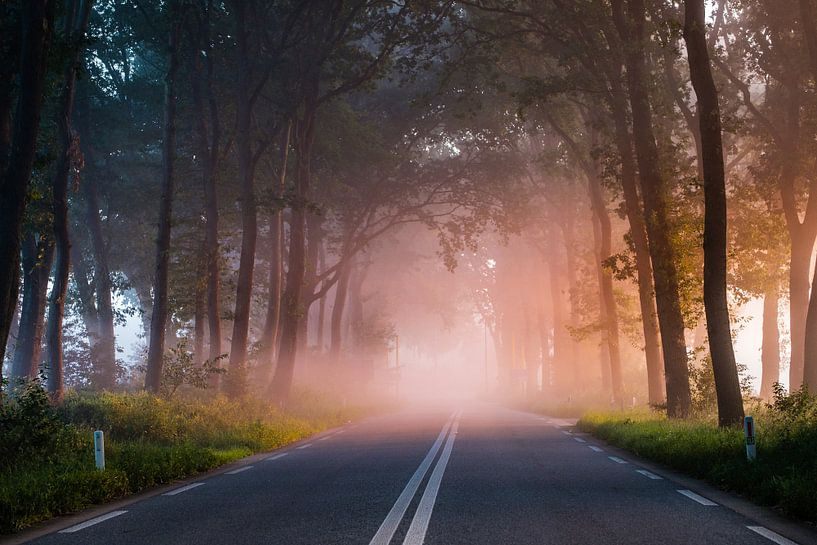 Magische mist van Tvurk Photography