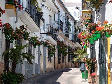 Kleurrijk straatje in Estepona-3 van Sijmen van der Plicht