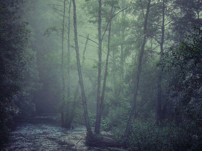 Smokey river van Aart Lameris