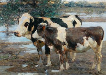 Zwei Kühe am Wasser