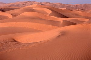 Sahara 6