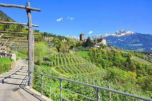 Tirol Castle in Spring