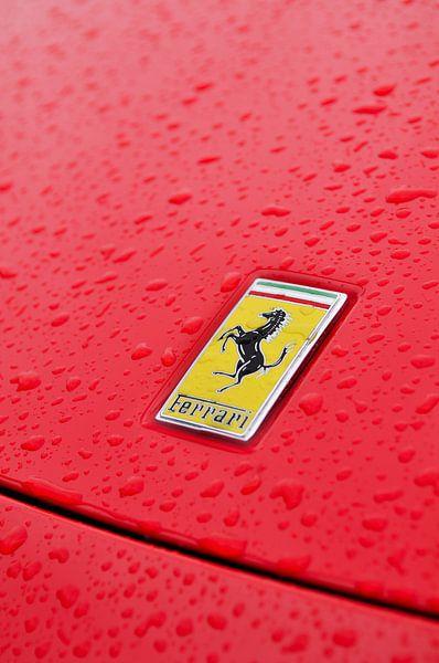 Ferrari logo van Sjoerd van der Wal