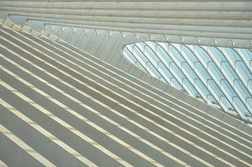 Lijnenplan in het dak van treinstation Luik Guillemins