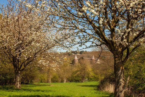 Lente rond de Abdij Sint-Benedictusberg  in Mamelis van John Kreukniet