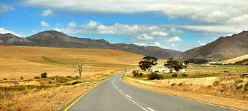 Platteland Zuid-afrika van
