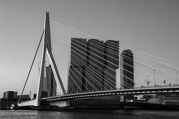 Der Rotterdam von Paul Schlüter