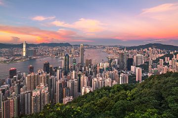 HONG KONG 15 sur Tom Uhlenberg