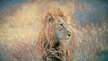 Leeuw in het hoge gras van Francis Dost