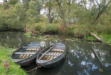 Bootjes in de Biesbosch van Carola van Rooy