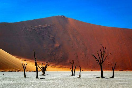 Prachtig verstilde opname van de Deadvlei in Namibië