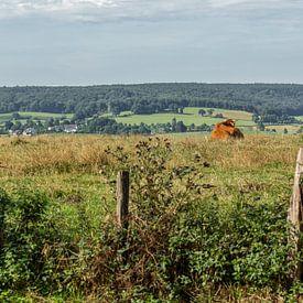 Blick auf die Hügel Südlimburgs von John Kreukniet
