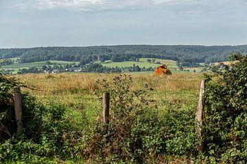 Uitzicht op de heuvels van Zuid-Limburg