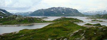 Landscape in Norway van Helly Coppens