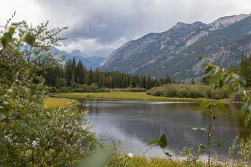 Banff national park Canada Alberta wetlands van Joost Winkens