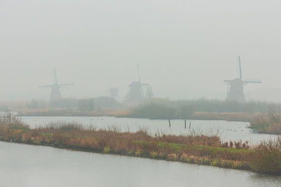 Kinderdijk in de Mist met windmolens. van Brian Morgan