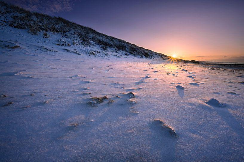 Snowburn sur Thom Brouwer