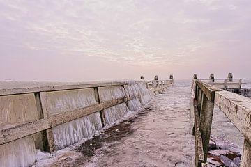 Bevroren pier van Leon Eikenaar