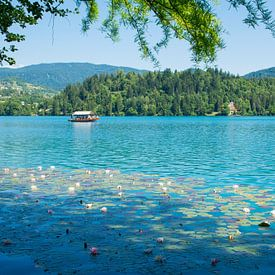 Het betoverende meer van Bled in Slovenie van Lifelicious