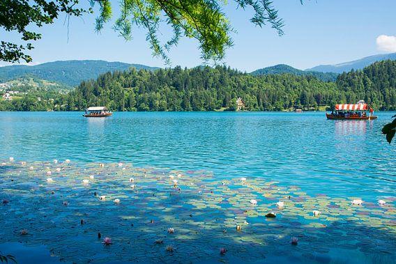 Het betoverende meer van Bled in Slovenie
