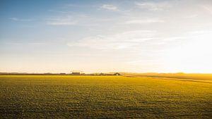 Noord-beveland landschap van