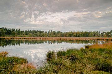 herfst in het lunsveen van Hans Wolters