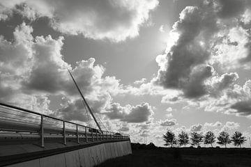 Calatrava de Citer von Ernst van Voorst