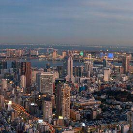 Ville de Tokyo Aperçu