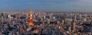 """Uitzicht op de Tokyo Tower tijdens """"blue hour"""" van"""