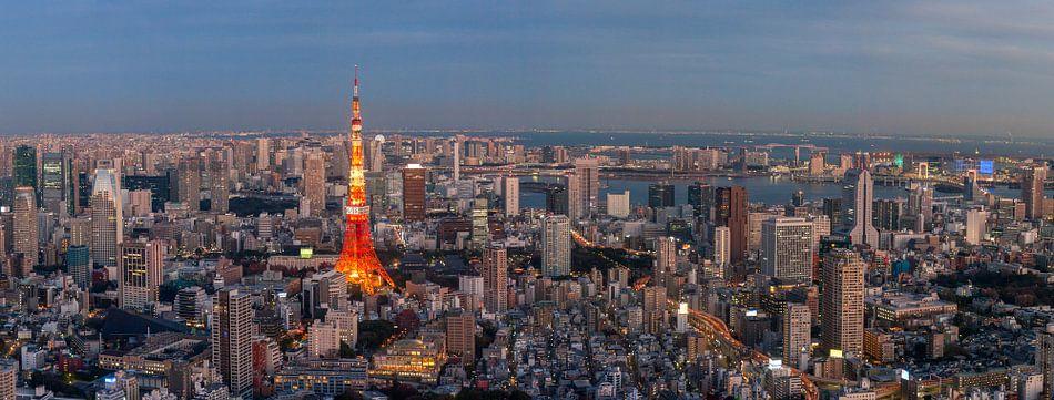 """Uitzicht op de Tokyo Tower tijdens """"blue hour"""""""