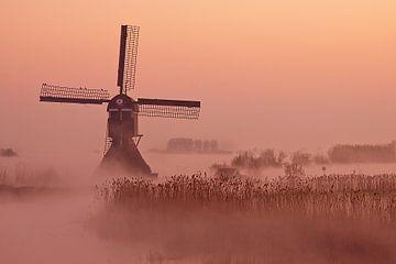 Mistige ochtend bij de Broekmolen van Halma Fotografie