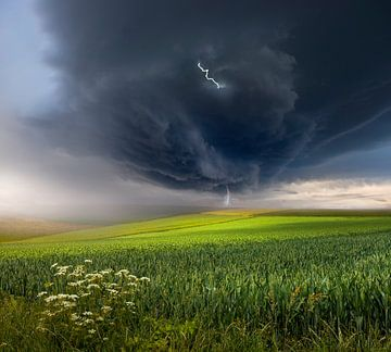 Juni storm, Nicolas Schumacher van 1x