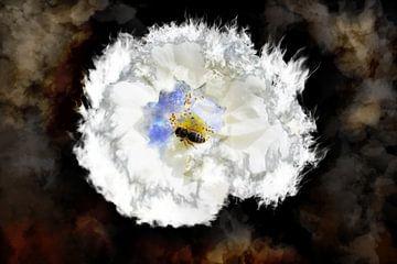Biene in der Rose von RK