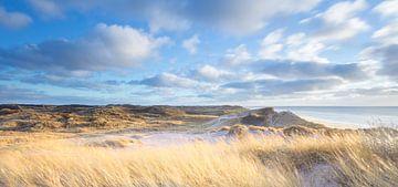 Dünenlandschaft - Jütland, Dänemark von Bas Meelker
